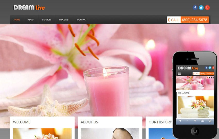Dream Live Beauty Parlour Mobile Website Template