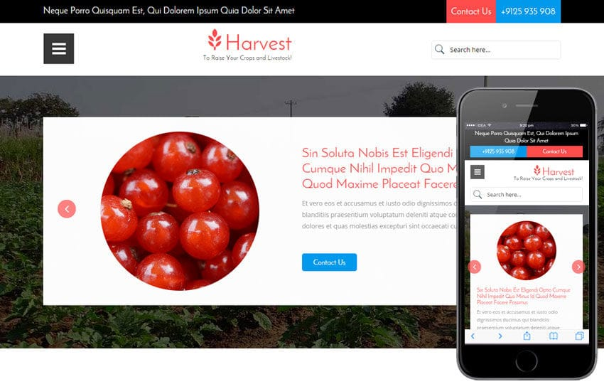 Harvest a Agriculture Category Flat Bootstrap Responsive Web Template