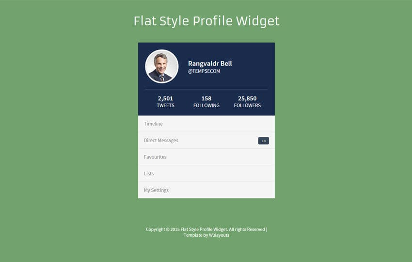 Flat Style Profile Responsive Widget Template