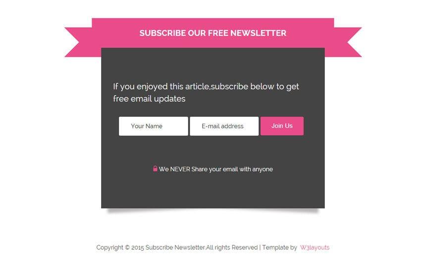 Newsletter Subscriber Form Responsive Widget Template