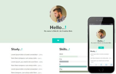 My Skills a Personal Portfolio Flat Bootstrap Responsive Web Template