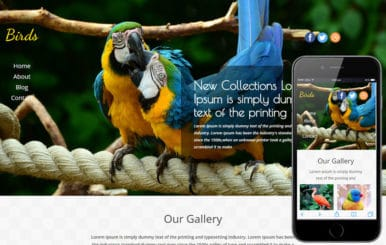 Birds a Animal Category Flat Bootstrap Responsive Web Template