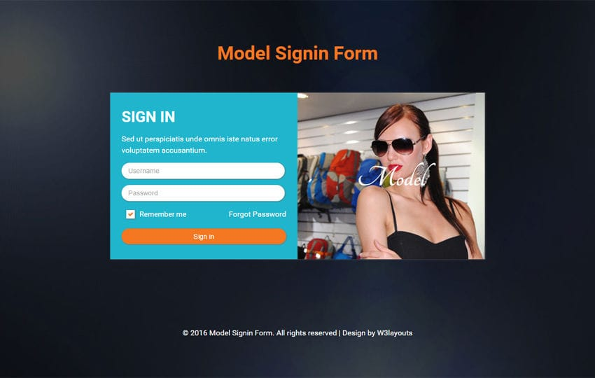 Model Signin Form  Responsive Widget Template