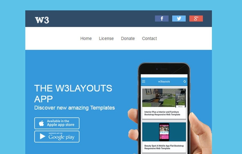 Introducing W3layouts app Newsletter Email Template