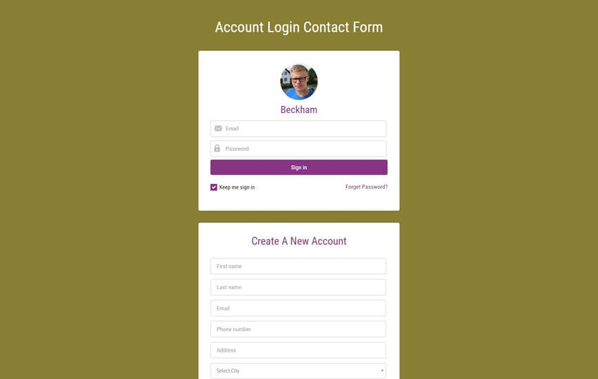 Account Login Contact Form Widget  Responsive Widget Template