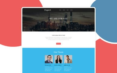 Expert a Newsletter Template