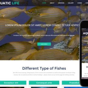 Aquatic Life a Animal Category Flat Bootstrap Responsive web Template
