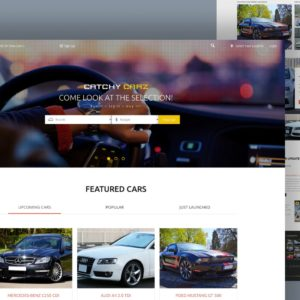 catchy carz website template