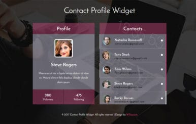 Contact Profile Widget a Flat Responsive Widget Template