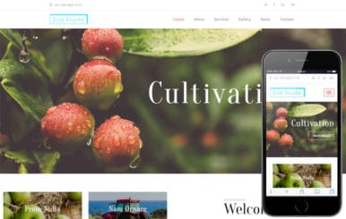 Eco Fruits an Agriculture Category Bootstrap Responsive Web Template