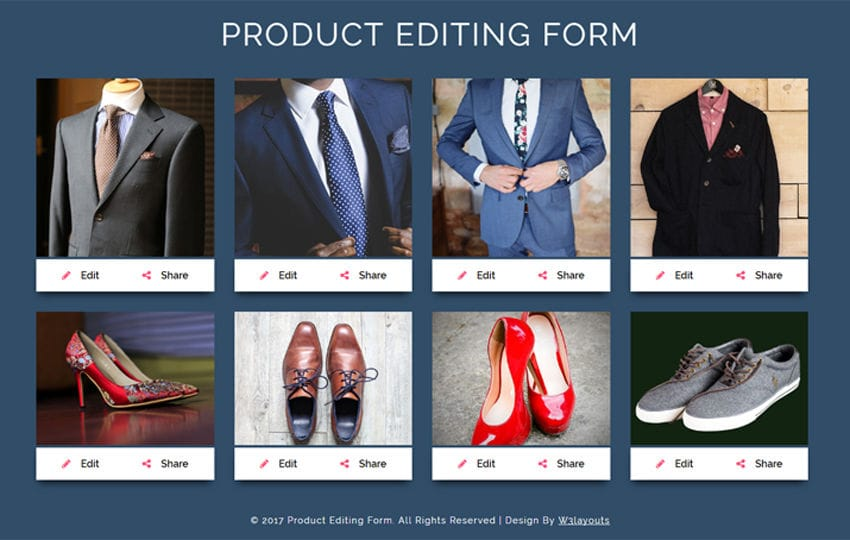 Product Editing Form a Flat Responsive Widget Template