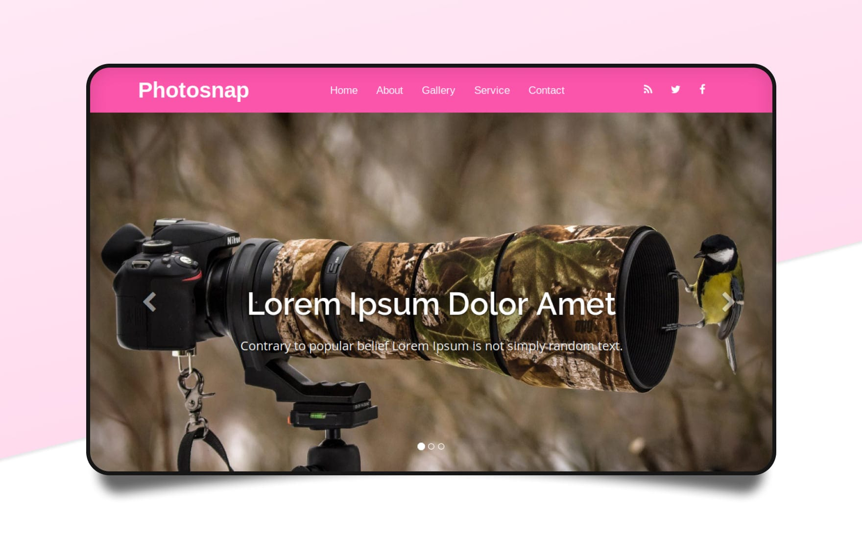 Photosnap a Photo Gallery Category Bootstrap Responsive Web Template