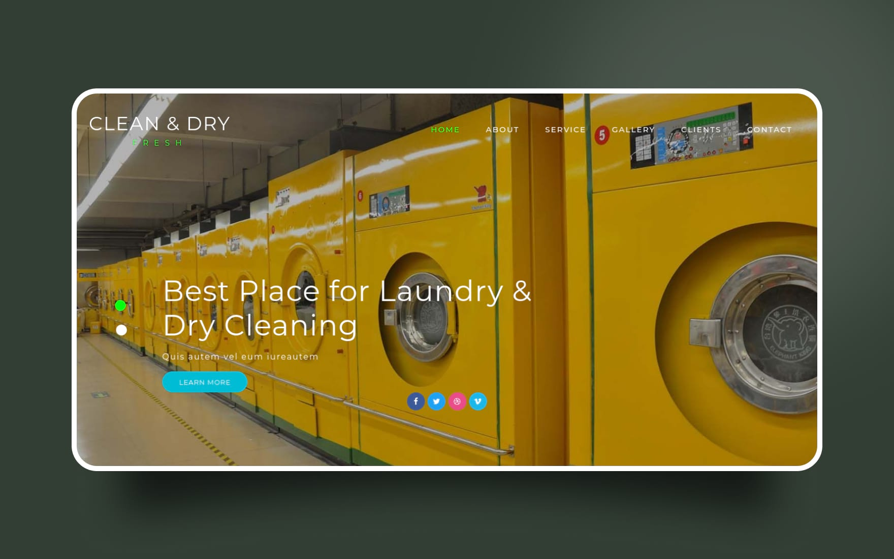 clean and dry website template