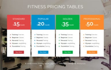 Fitness Pricing Tables Responsive Widget Template