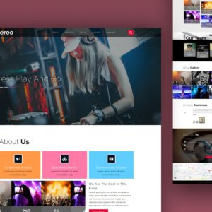 stereo website template