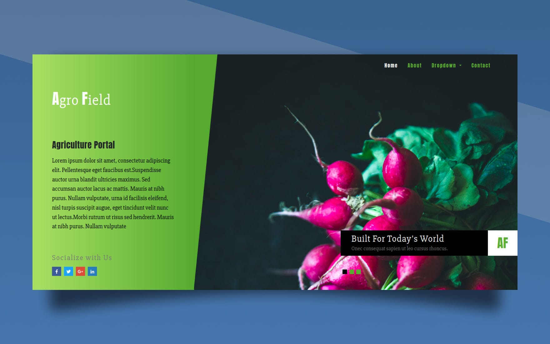 Agro Field Agriculture Category Bootstrap Responsive Web Template.
