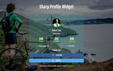 Sharp Profile Flat Responsive Widget Template