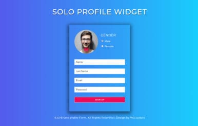 Solo Profile a Flat Responsive Widget Template
