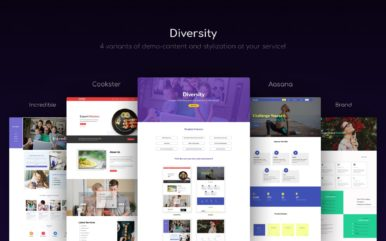 diversity website template