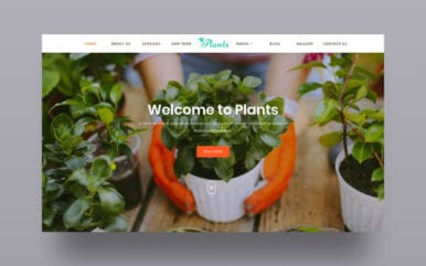 website-templates
