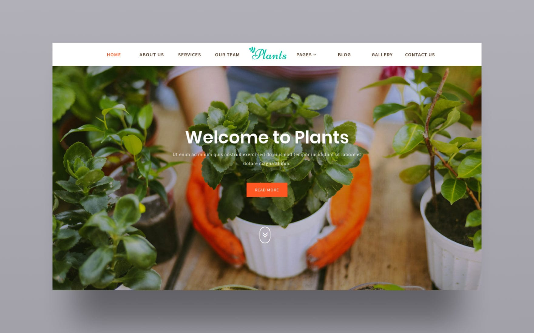 Plants – Agriculture Category Bootstrap Responsive Web Template