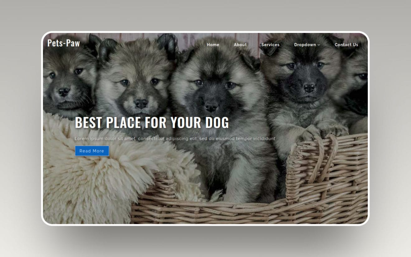 Pets Paw – Animals Category Flat Bootstrap Responsive Web Template