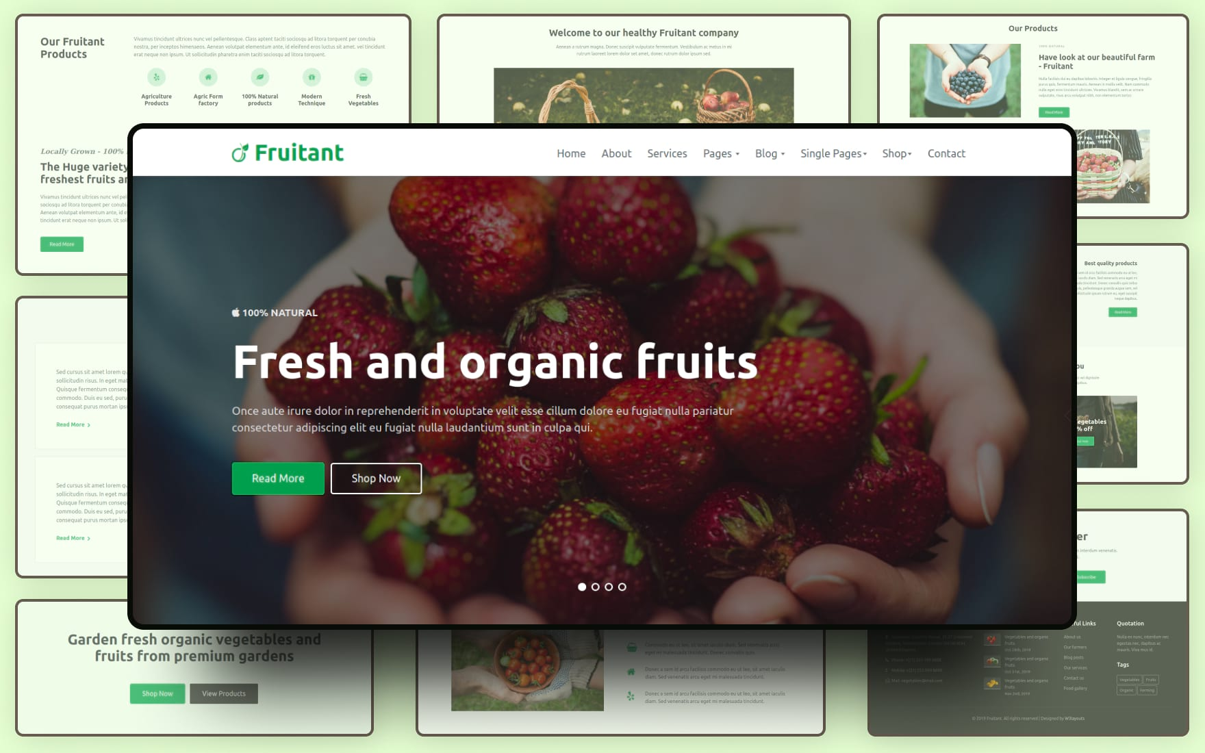 fruitant premuim website template