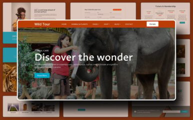 Wild Tour Website Template